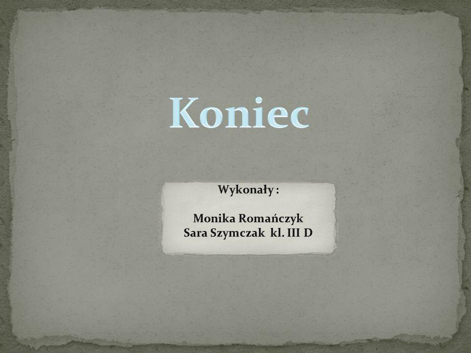 Koniec Wykonały : Monika Romańczyk Sara Szymczak kl. III D