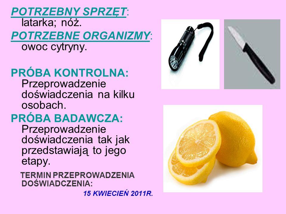 POTRZEBNY SPRZĘT: latarka; nóż. POTRZEBNE ORGANIZMY: owoc cytryny.