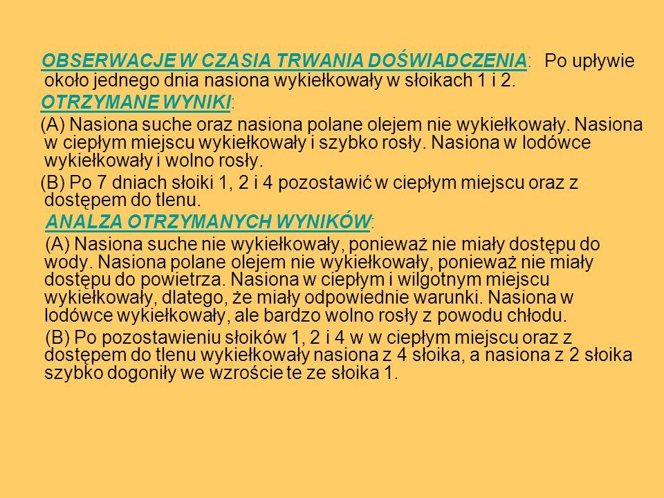 OBSERWACJE W CZASIA TRWANIA DOŚWIADCZENIA: Po upływie około jednego dnia nasiona wykiełkowały w słoikach 1 i 2.