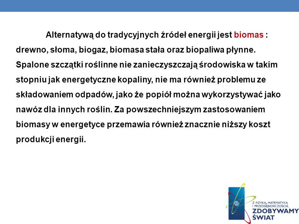 Alternatywą do tradycyjnych źródeł energii jest biomas : drewno, słoma, biogaz, biomasa stała oraz biopaliwa płynne.