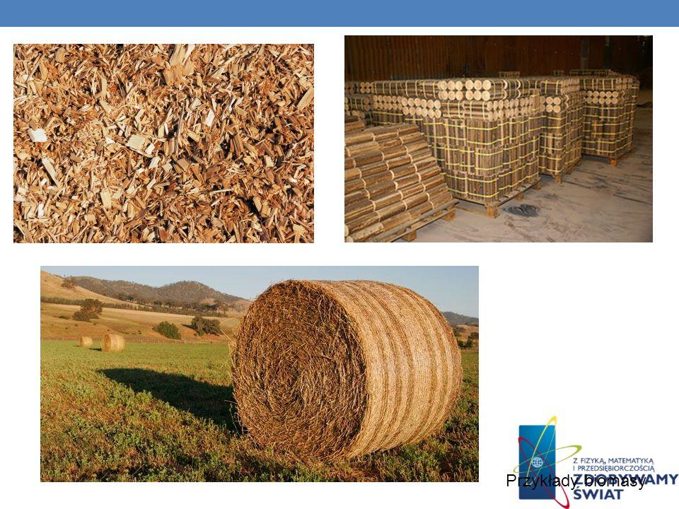 Przykłady biomasy