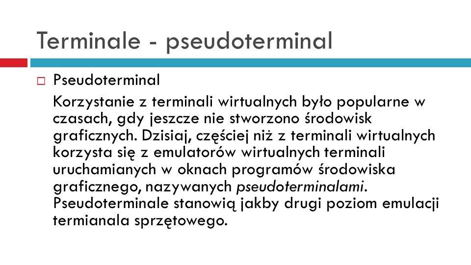 Terminale - pseudoterminal