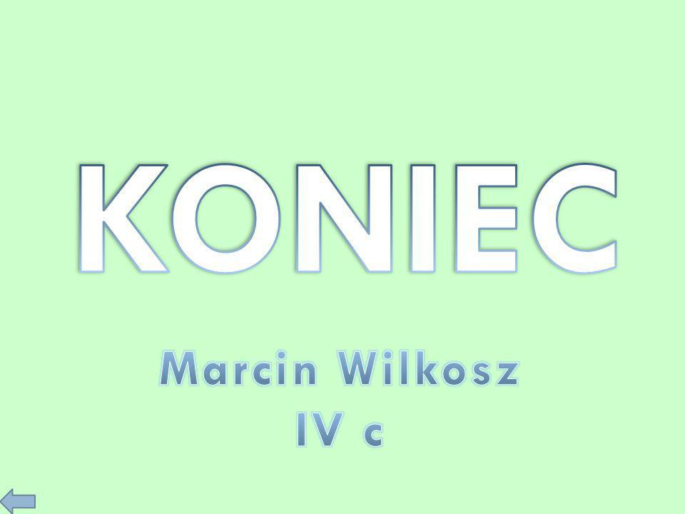 KONIEC Marcin Wilkosz IV c