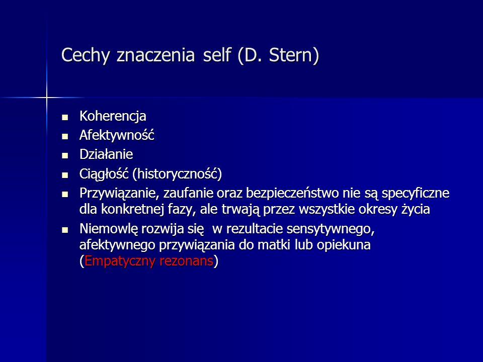 Cechy znaczenia self (D. Stern)