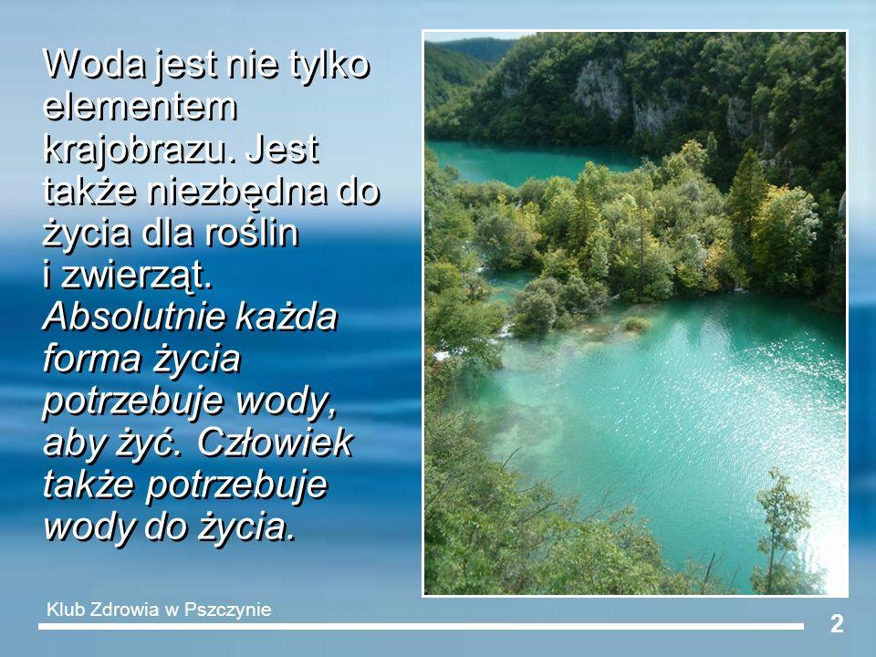 Woda jest nie tylko elementem krajobrazu