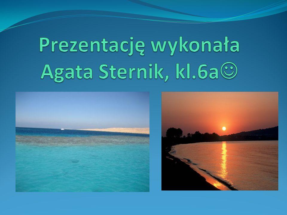 Prezentację wykonała Agata Sternik, kl.6a