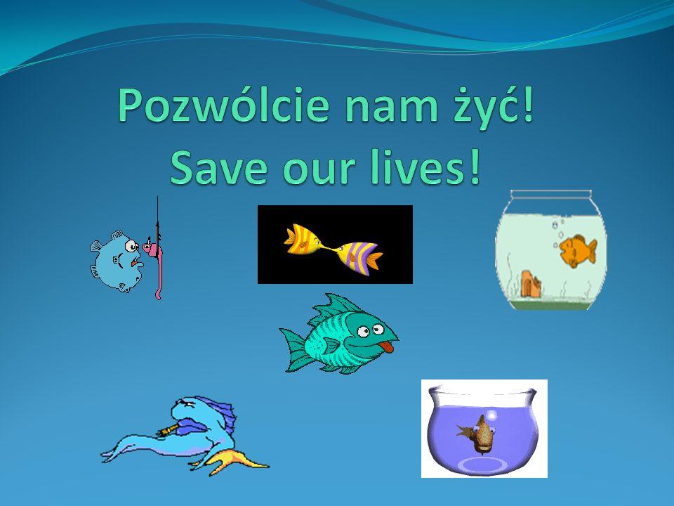 Pozwólcie nam żyć! Save our lives!