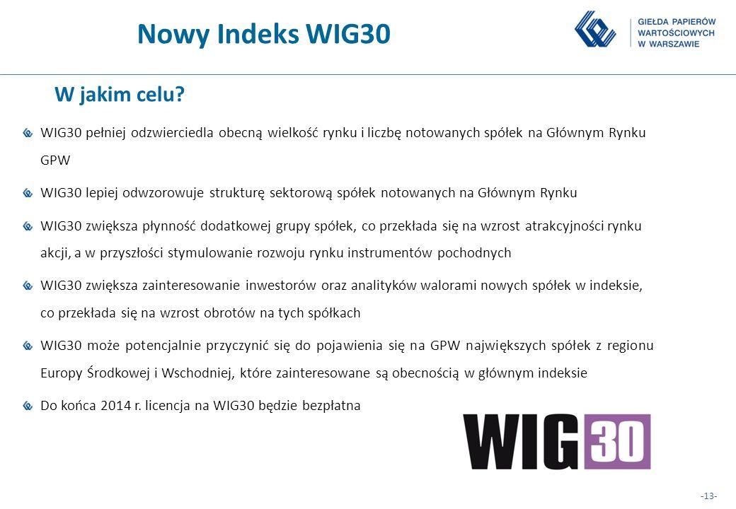 Nowy Indeks WIG30 W jakim celu