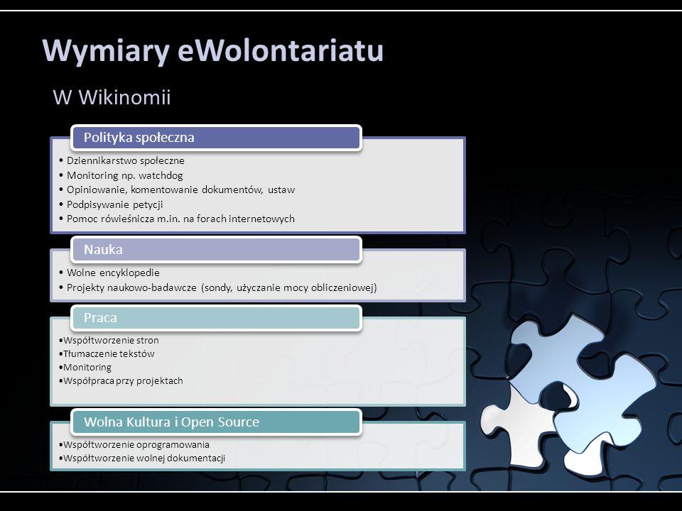Wymiary eWolontariatu