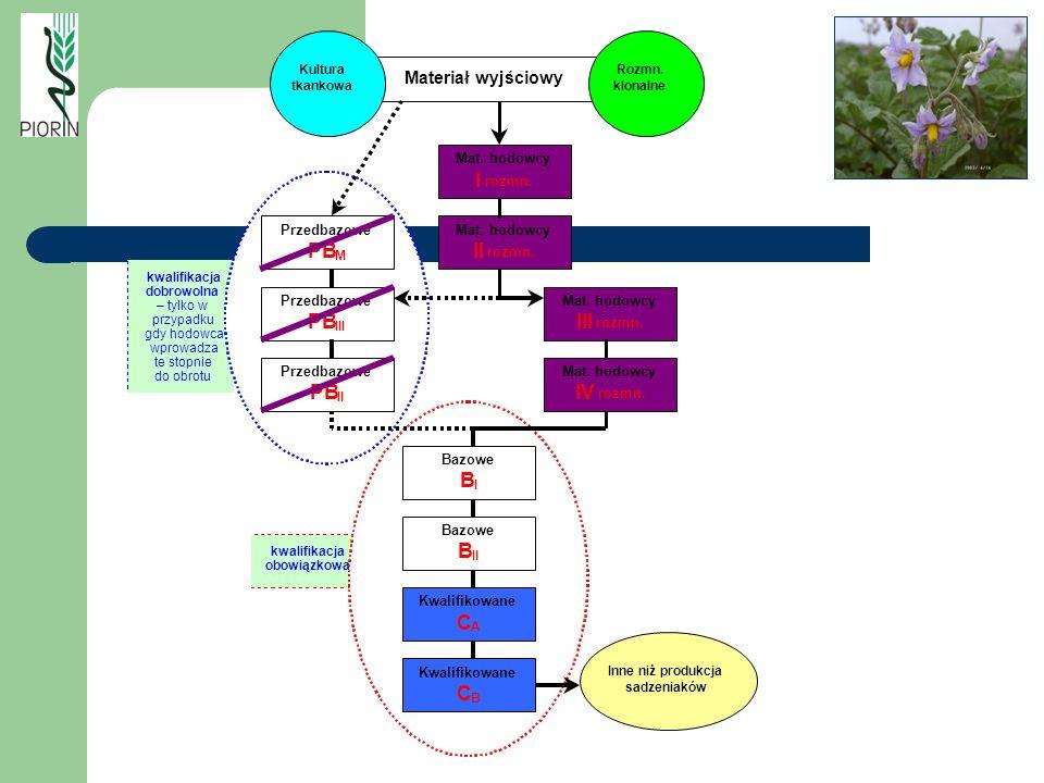 PB C IV I Materiał wyjściowy Przedbazowe Kwalifikowane Mat. hodowcy