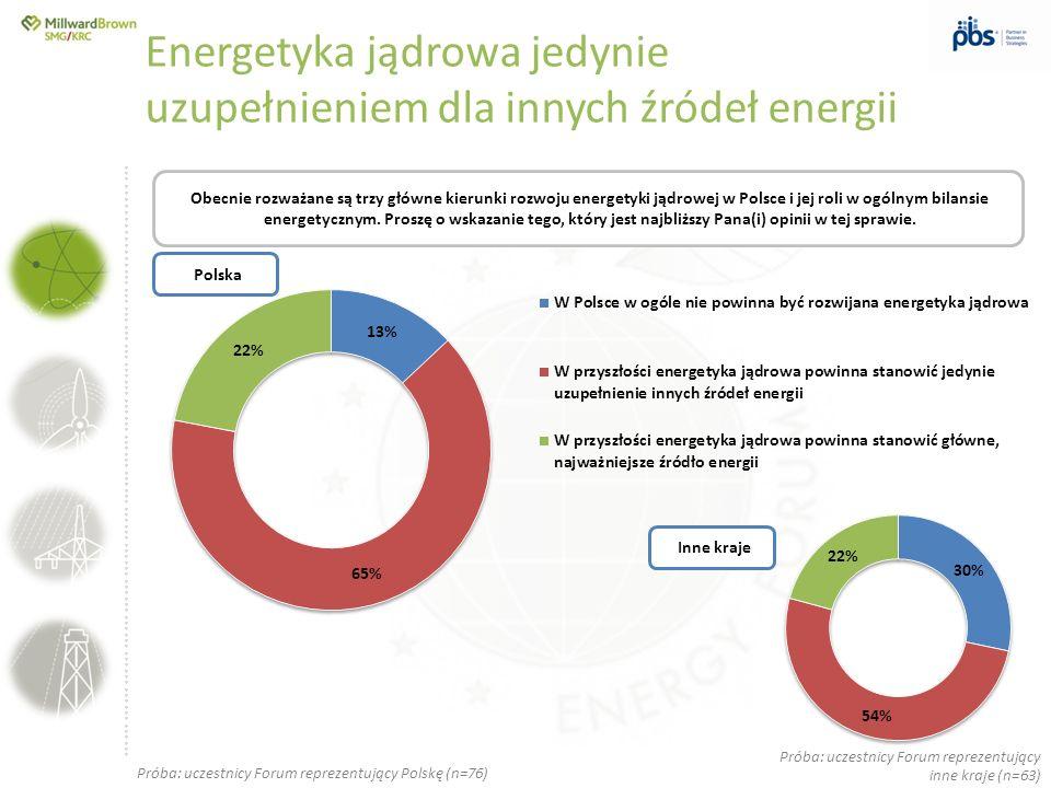 Energetyka jądrowa jedynie uzupełnieniem dla innych źródeł energii