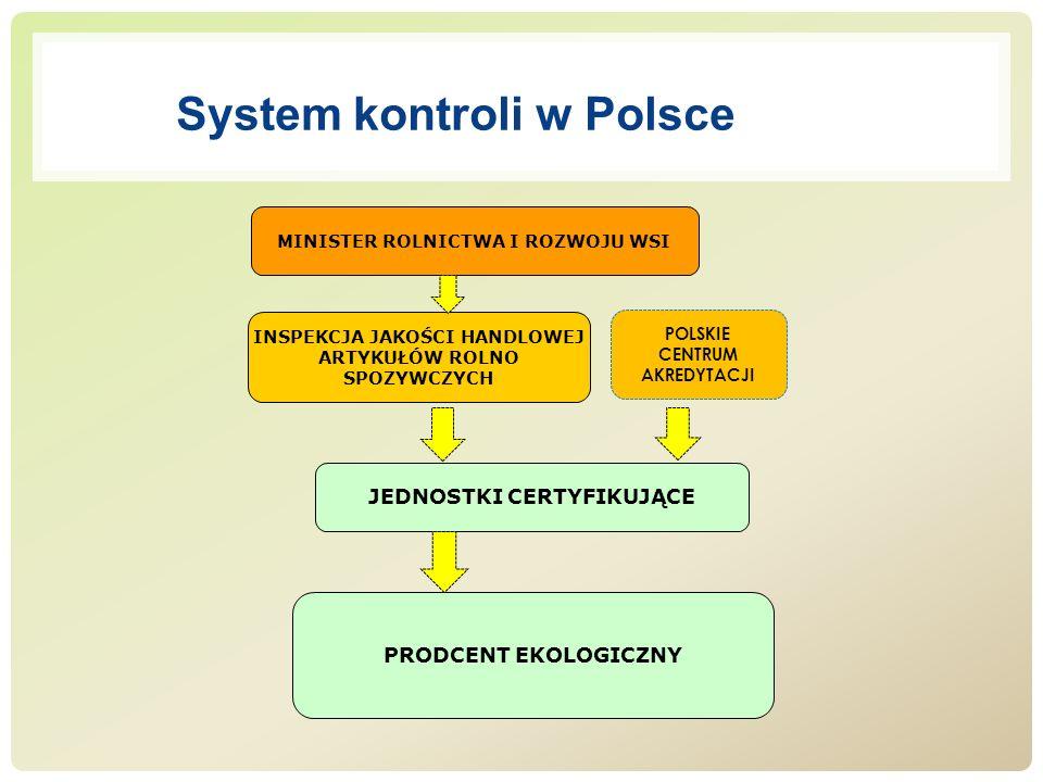 System kontroli w Polsce