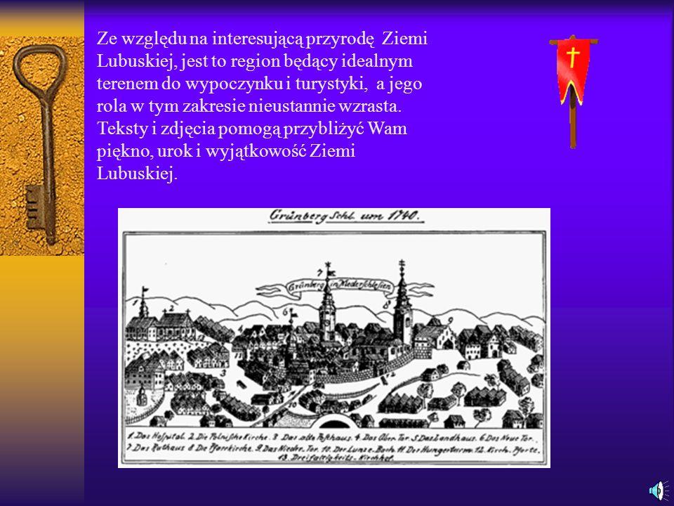Ze względu na interesującą przyrodę Ziemi Lubuskiej, jest to region będący idealnym terenem do wypoczynku i turystyki, a jego rola w tym zakresie nieustannie wzrasta.