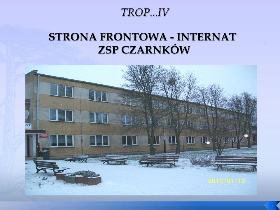 STRONA FRONTOWA - INTERNAT ZSP CZARNKÓW