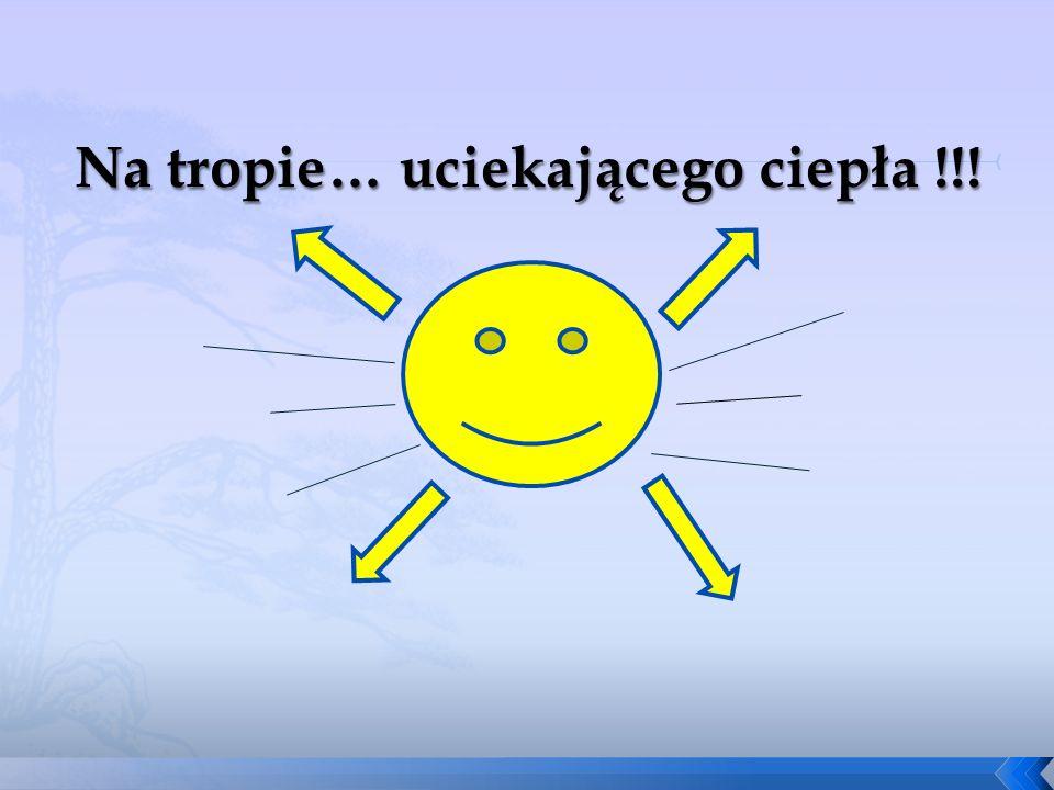 Na tropie… uciekającego ciepła !!!