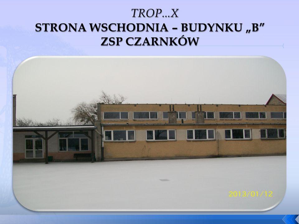 """STRONA WSCHODNIA – BUDYNKU """"B ZSP CZARNKÓW"""