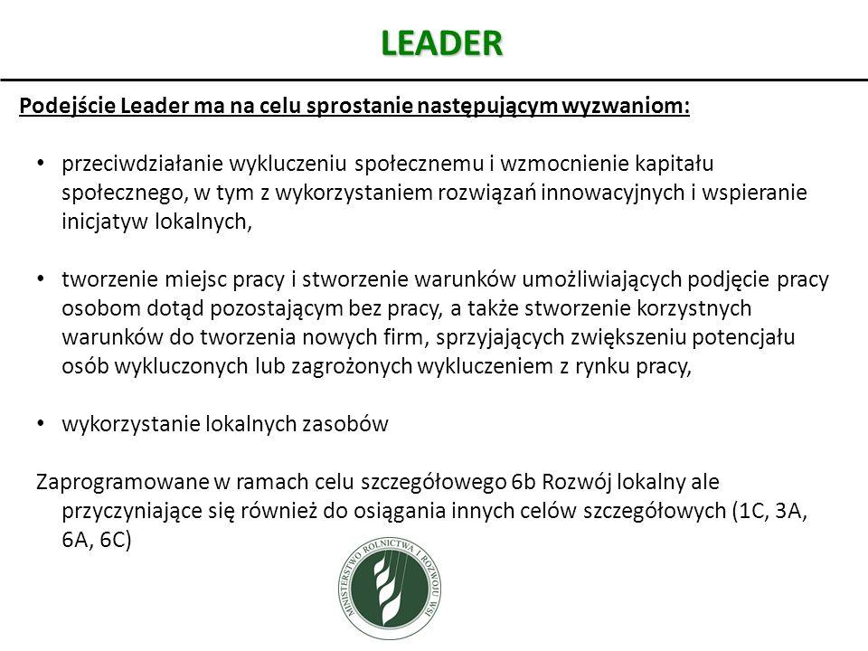 LEADER Podejście Leader ma na celu sprostanie następującym wyzwaniom:
