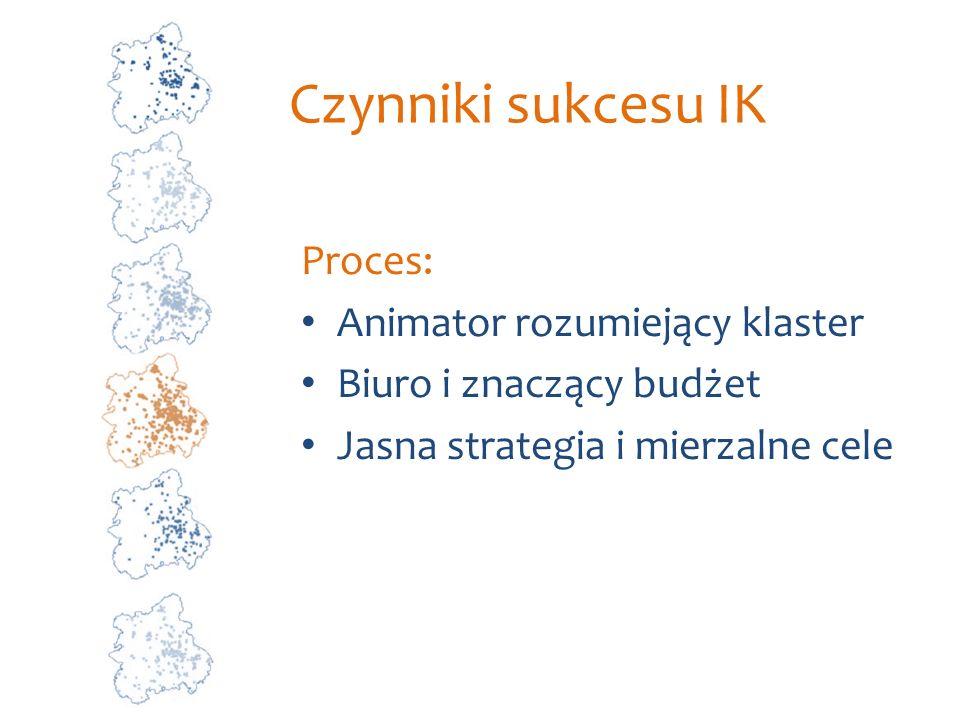 Czynniki sukcesu IK Proces: Animator rozumiejący klaster
