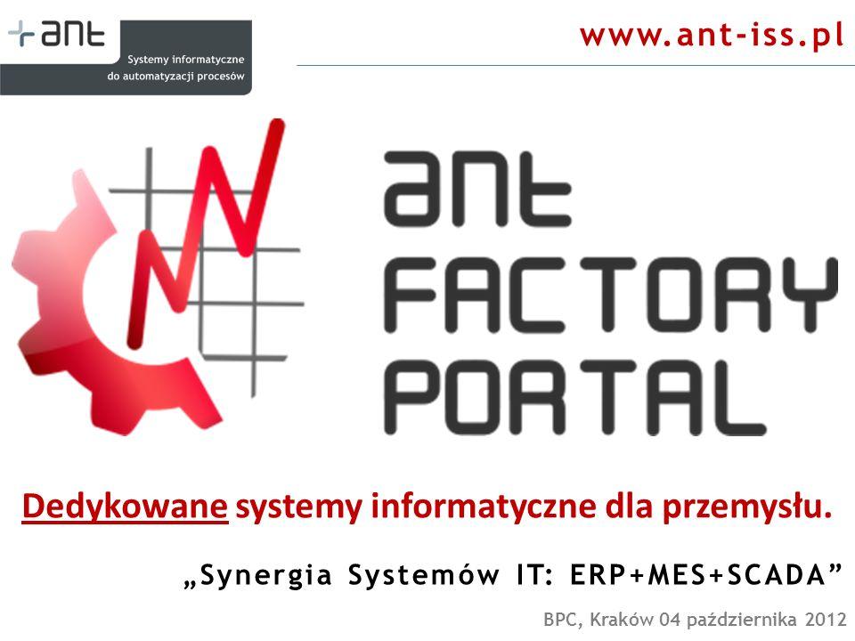 Dedykowane systemy informatyczne dla przemysłu.