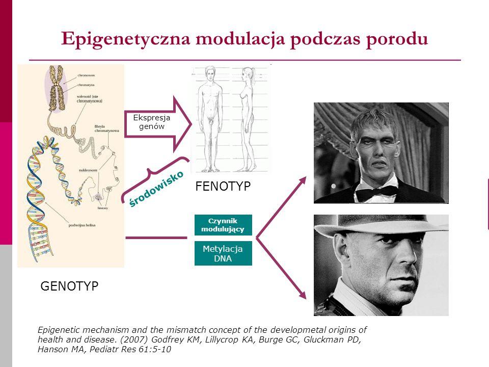 Epigenetyczna modulacja podczas porodu