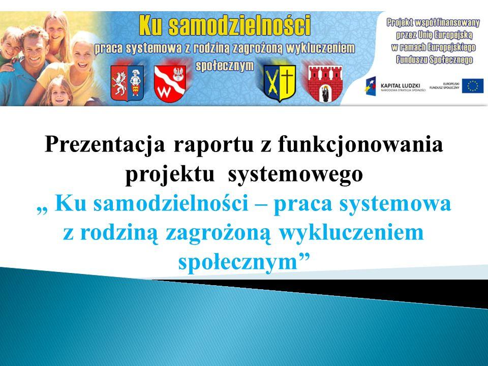Prezentacja raportu z funkcjonowania projektu systemowego