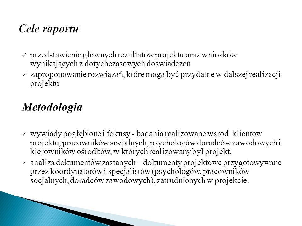 Cele raportu Metodologia