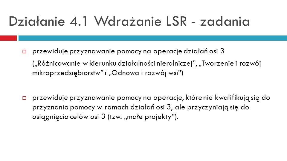 Działanie 4.1 Wdrażanie LSR - zadania