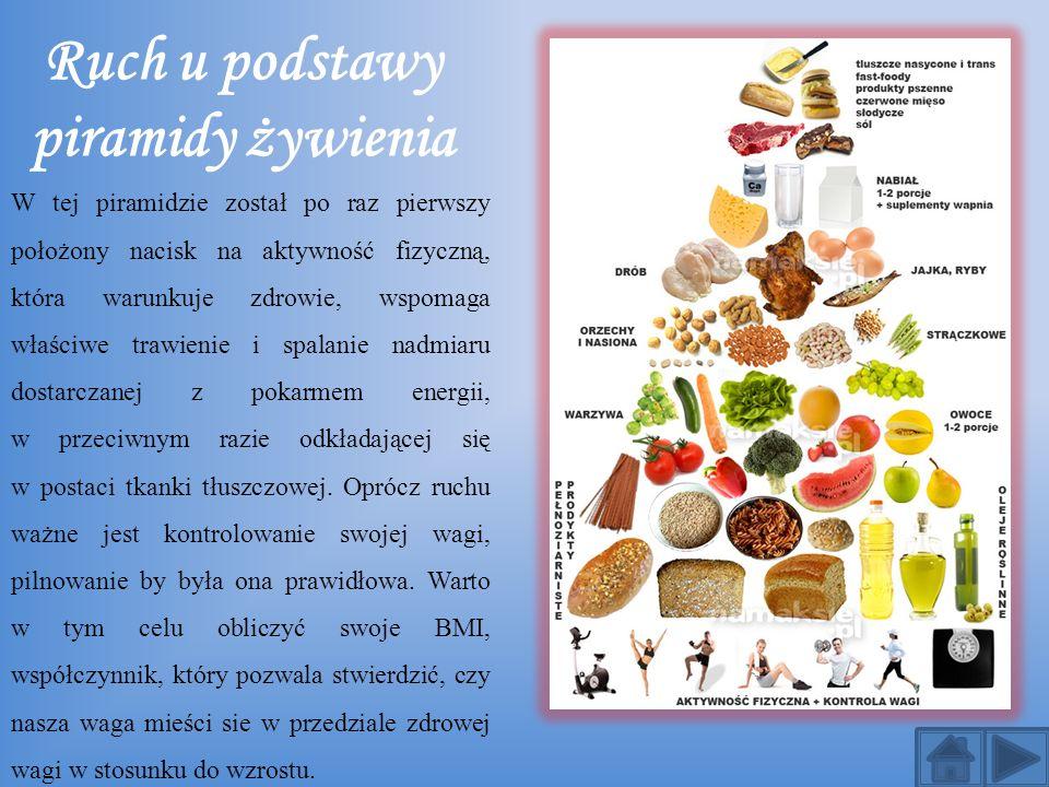 Ruch u podstawy piramidy żywienia