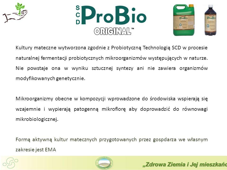 Kultury mateczne wytworzona zgodnie z Probiotyczną Technologią SCD w procesie naturalnej fermentacji probiotycznych mikroorganizmów występujących w naturze. Nie powstaje ona w wyniku sztucznej syntezy ani nie zawiera organizmów modyfikowanych genetycznie.