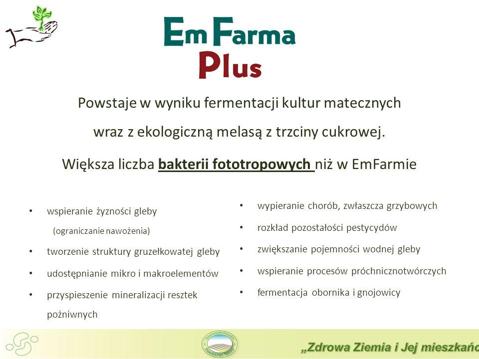 Większa liczba bakterii fototropowych niż w EmFarmie