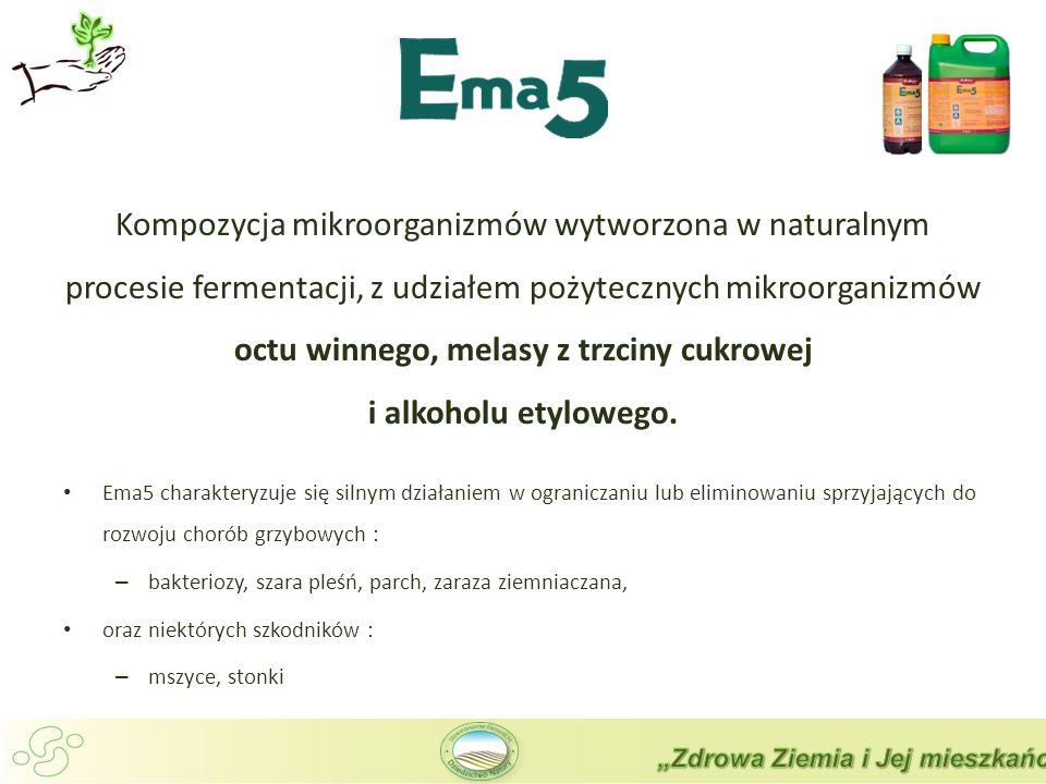 Kompozycja mikroorganizmów wytworzona w naturalnym procesie fermentacji, z udziałem pożytecznych mikroorganizmów octu winnego, melasy z trzciny cukrowej i alkoholu etylowego.