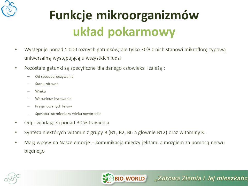 Funkcje mikroorganizmów układ pokarmowy