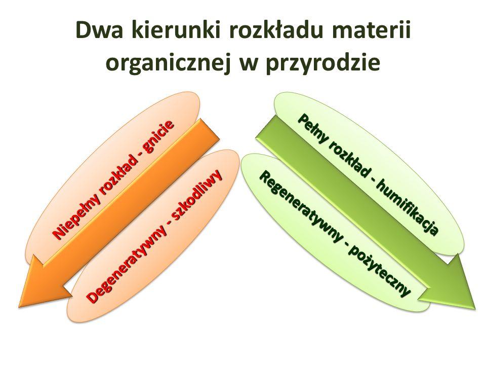 Dwa kierunki rozkładu materii organicznej w przyrodzie