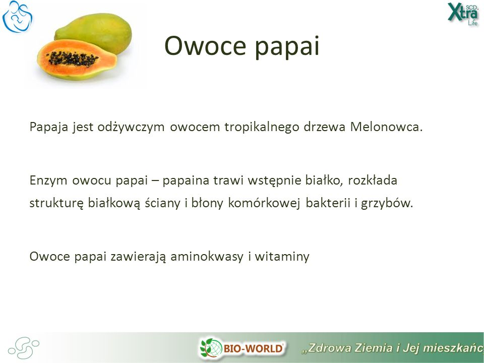 Owoce papai