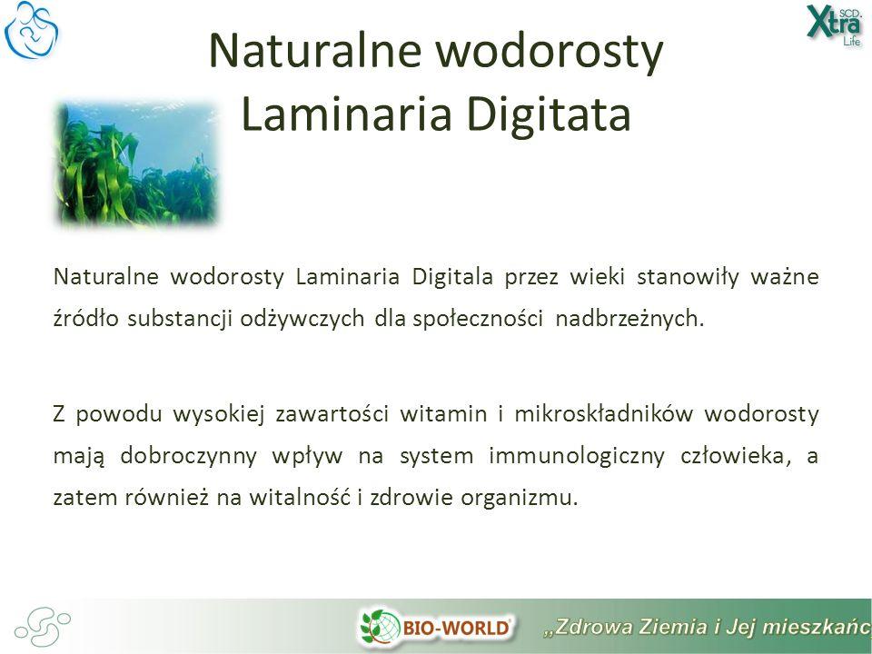 Naturalne wodorosty Laminaria Digitata