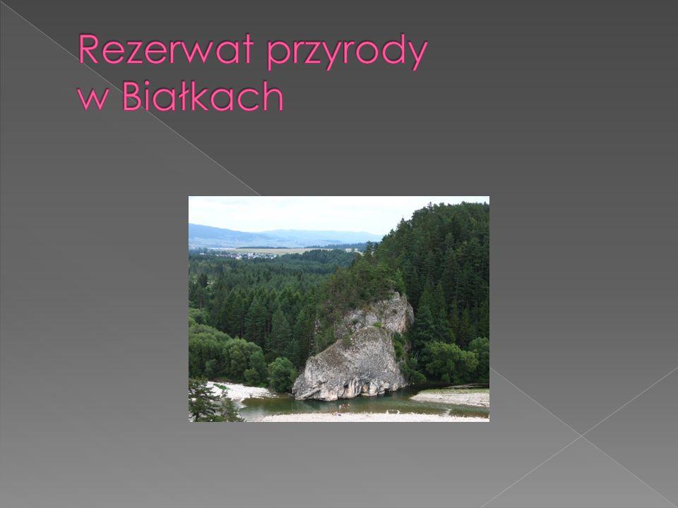 Rezerwat przyrody w Białkach