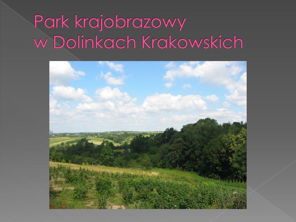 Park krajobrazowy w Dolinkach Krakowskich