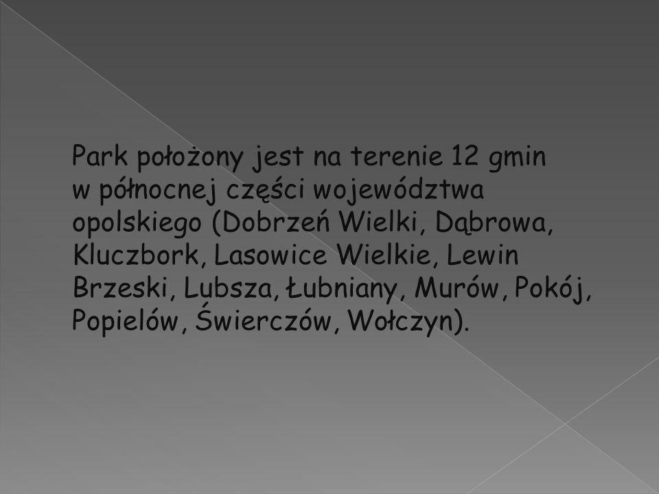 Park położony jest na terenie 12 gmin w północnej części województwa opolskiego (Dobrzeń Wielki, Dąbrowa, Kluczbork, Lasowice Wielkie, Lewin Brzeski, Lubsza, Łubniany, Murów, Pokój, Popielów, Świerczów, Wołczyn).