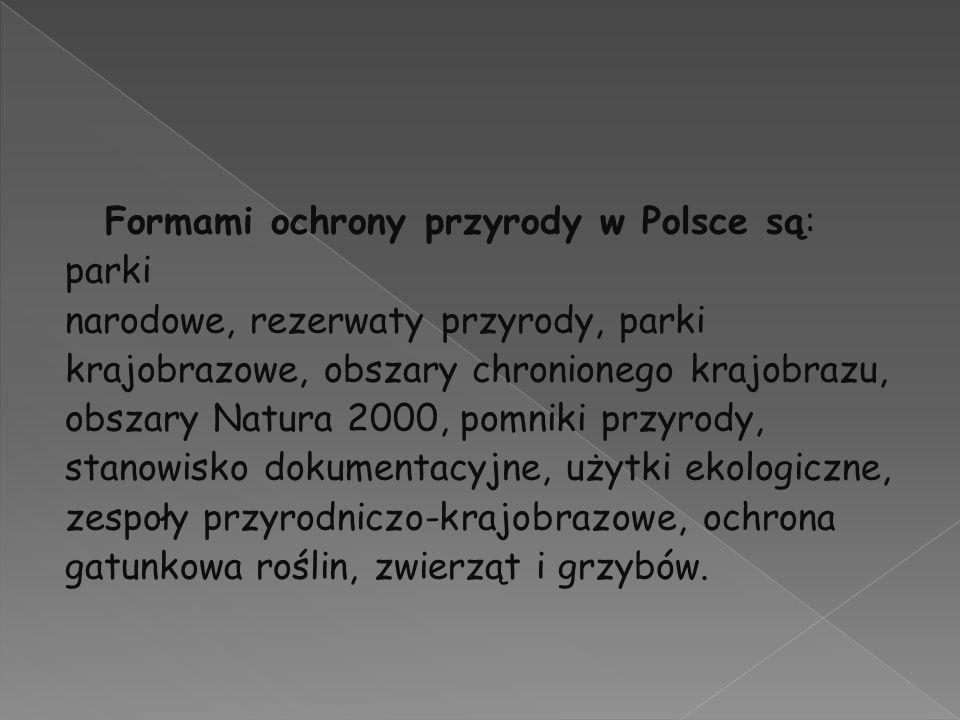 Formami ochrony przyrody w Polsce są: