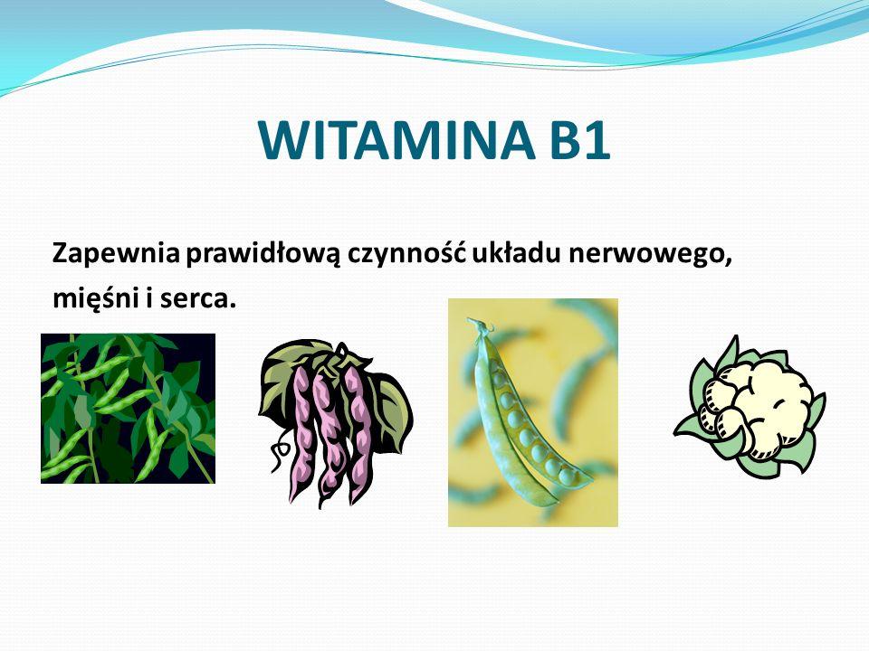 WITAMINA B1 Zapewnia prawidłową czynność układu nerwowego, mięśni i serca.