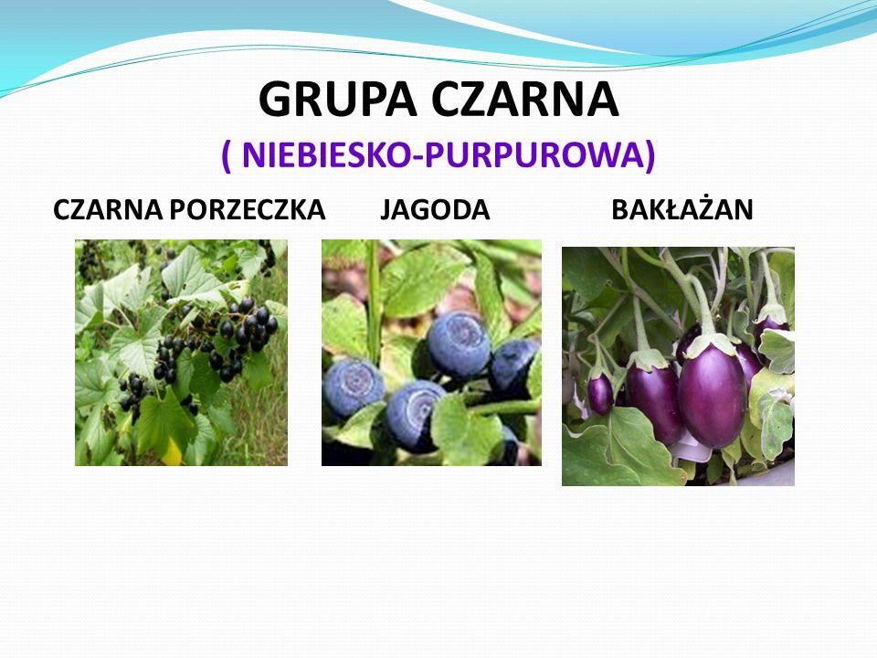 GRUPA CZARNA ( NIEBIESKO-PURPUROWA)