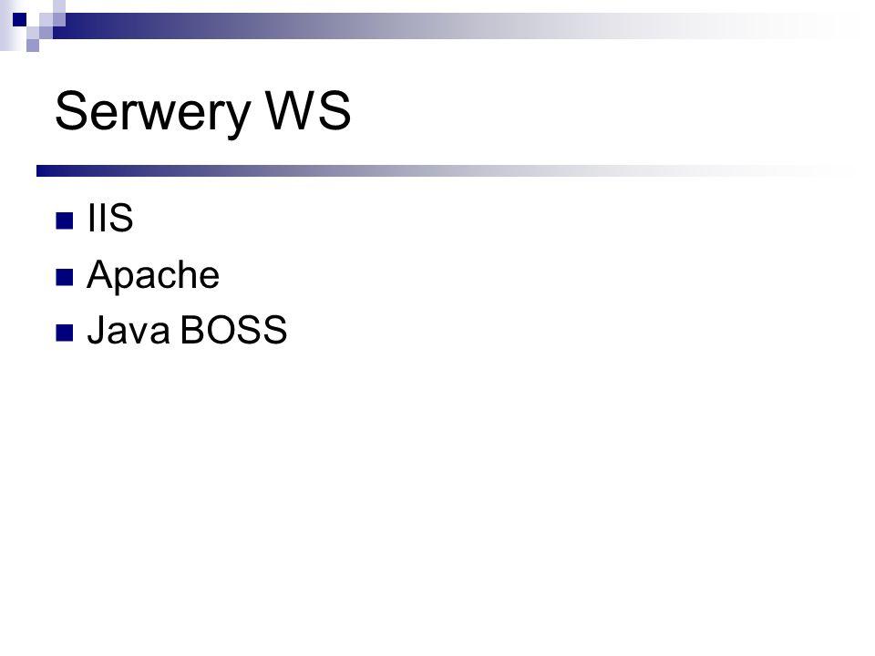 Serwery WS IIS Apache Java BOSS