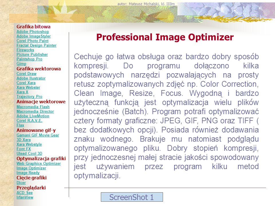 Professional Image Optimizer