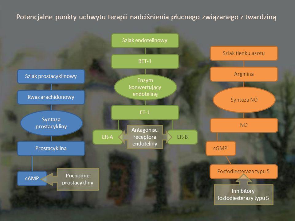Potencjalne punkty uchwytu terapii nadciśnienia płucnego związanego z twardziną