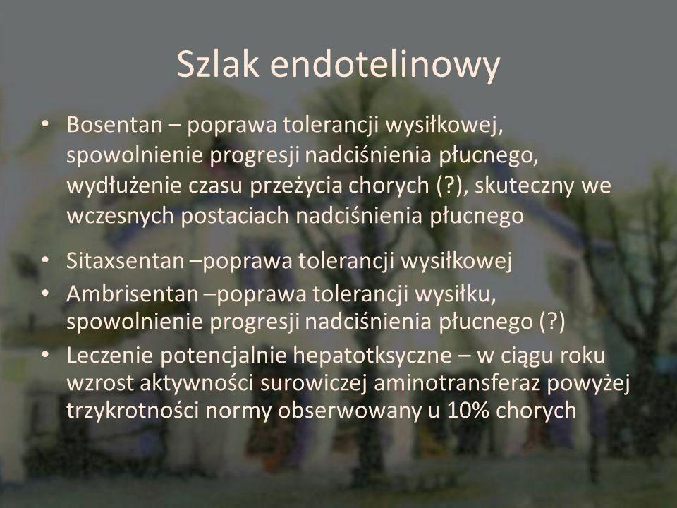 Szlak endotelinowy