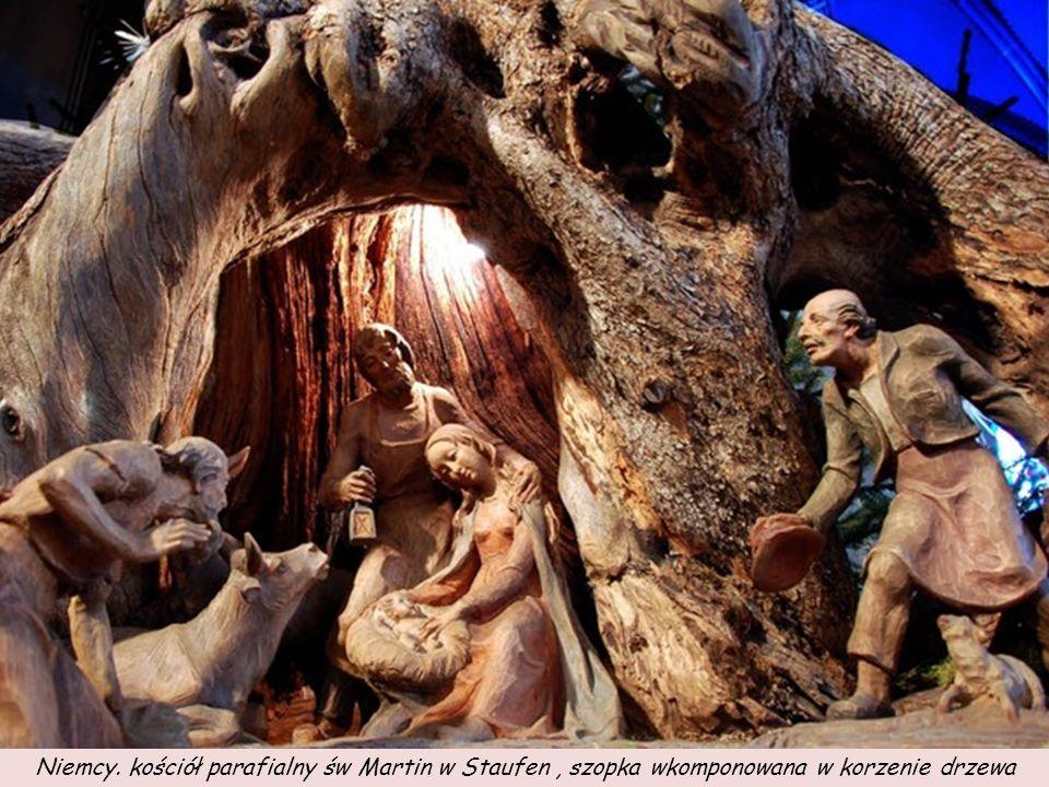 Niemcy. kościół parafialny św Martin w Staufen , szopka wkomponowana w korzenie drzewa