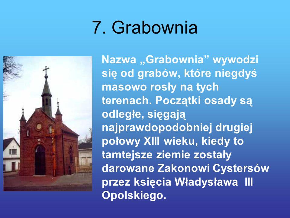 7. Grabownia