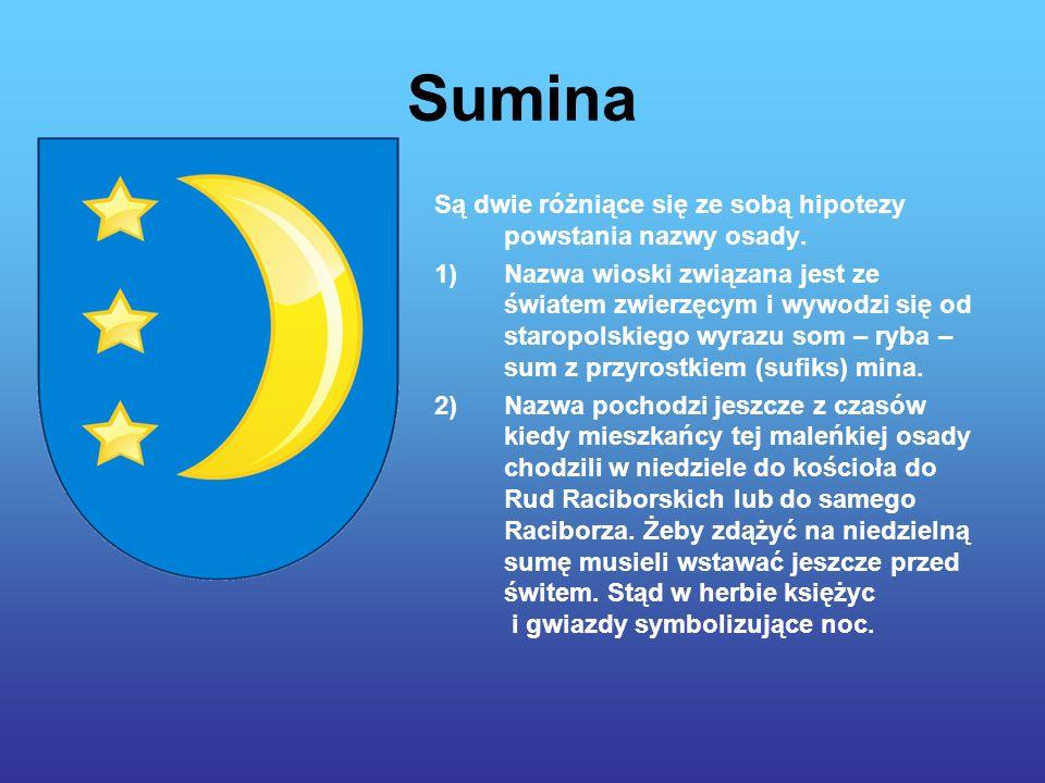 Sumina Są dwie różniące się ze sobą hipotezy powstania nazwy osady.
