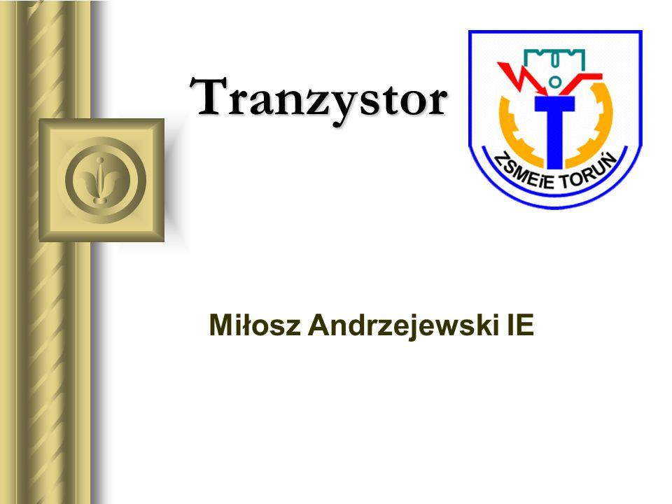 Miłosz Andrzejewski IE