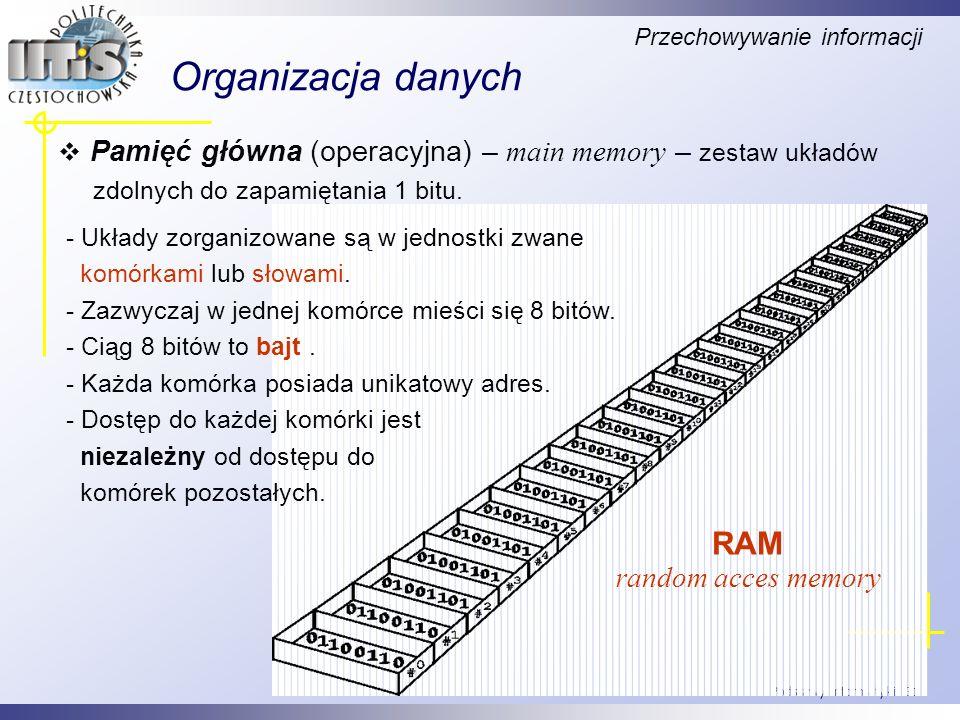 Organizacja danych RAM